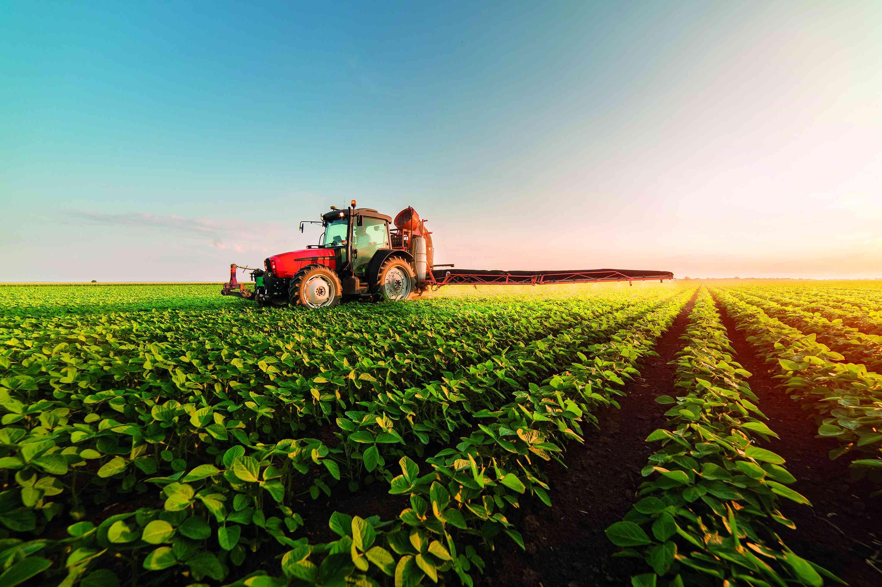 Exportações do agronegócio são recordes, mas faturamento cai - Fénix  Empresas